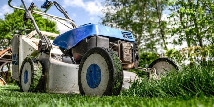 Must-Have Accessories For Your Lawn And Backyard