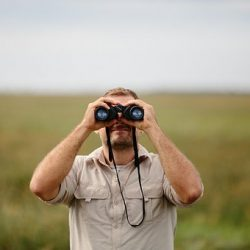 Hiring a private investigator for your personal matters